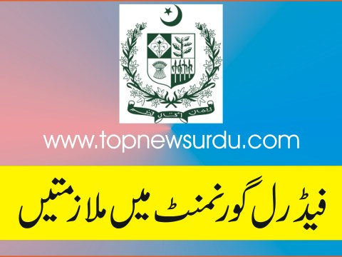 jobs in federal government 2019