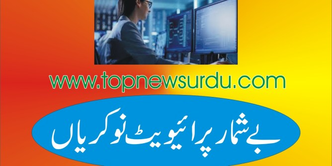 jobs in private sector 2019