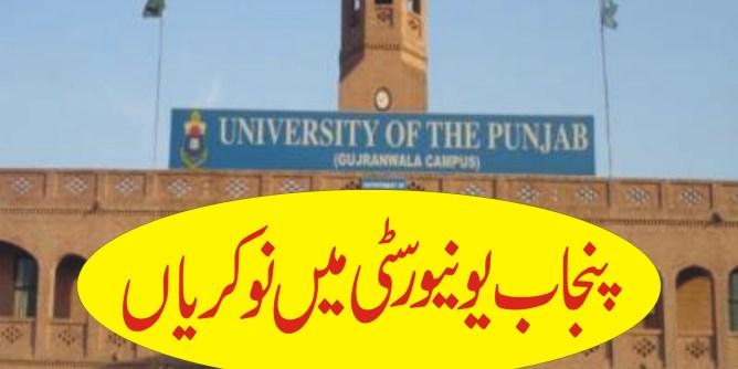 jobs in punjab university 2019