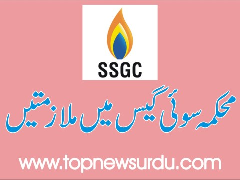 jobs in sui gas 2019