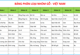 Bảng phân loại nhóm gỗ theo tiêu chuẩn Việt Nam