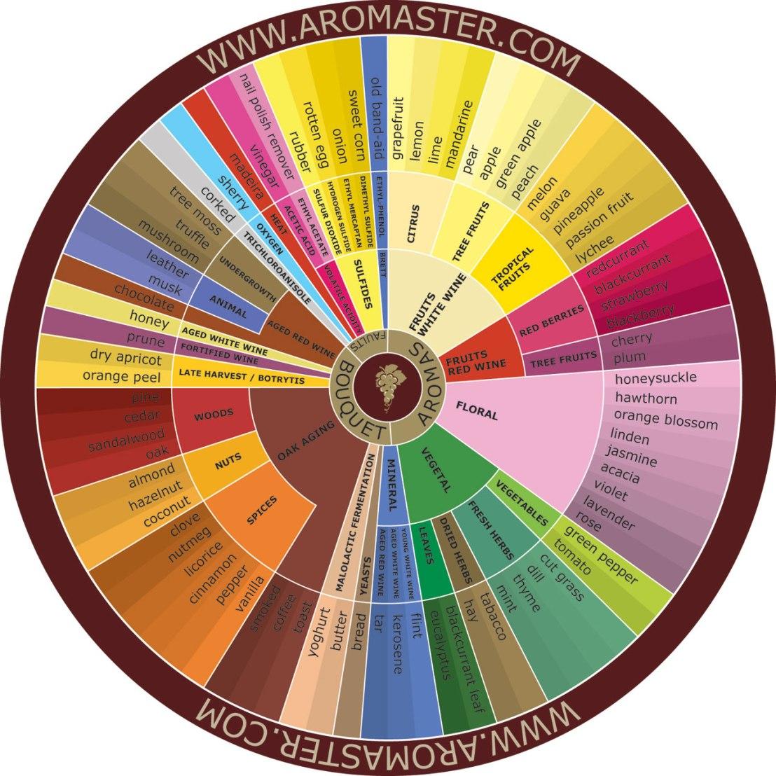 wine flavor wheel