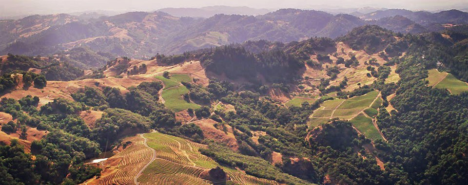Smith-Madrone winery on Napa's Spring Mountain