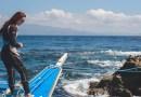 10 อันดับโรงแรมดำน้ำกับฉลามวาฬ ในเมือง ออสลอบ ( Oslob ) ประเทศฟิลิปปินส์ (Philippines)