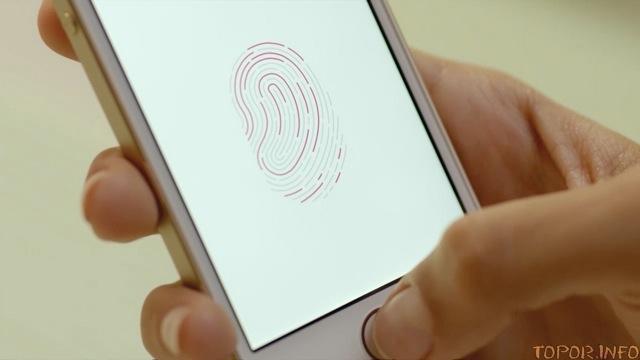 Система распознавания отпечатка пальца