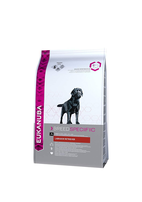 Eukanuba Labrador Retriever