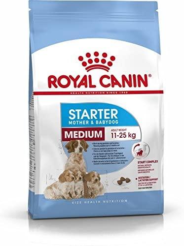 Pienso Royal Canin Starter Medium para cachorros recién nacidos