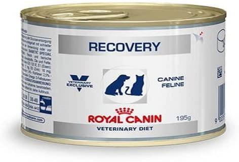 Pienso Royal Canin Recovery para recuperación de enfermedades
