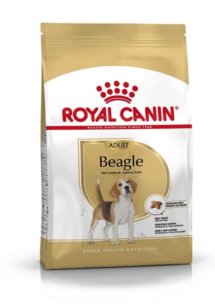 Pienso Royal Canin Beagle