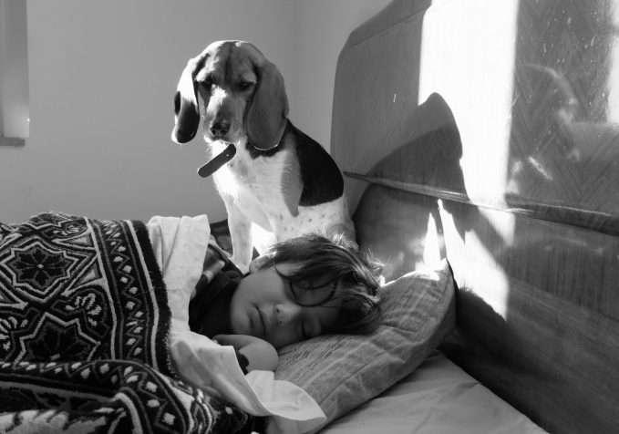 Perro protegiendo a un niño mientras duerme