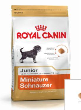 Opiniones piensos royal canin
