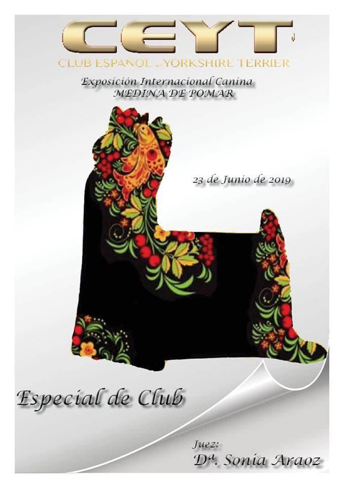 Cartel de la actividad del Club Español Yorkshire Terrier en Medina de Pomar