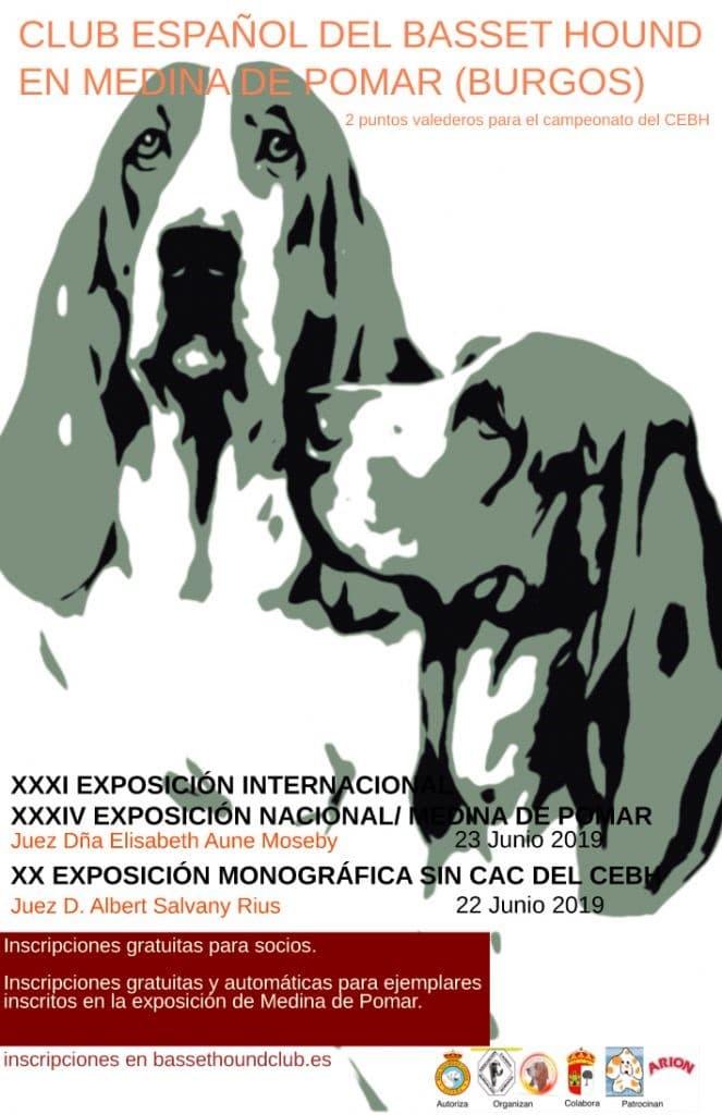 Cartel exposición monográfica Medina de Pomar 2019
