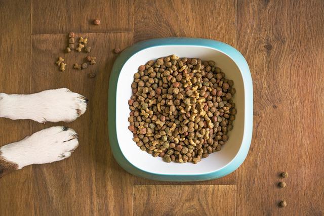 pienso para perro con alergia