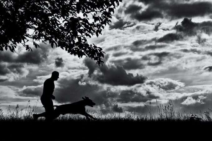 El canicross es un deporte del que disfrutan tanto el perro como su dueño