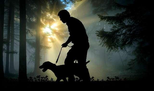 senderos-con-perros