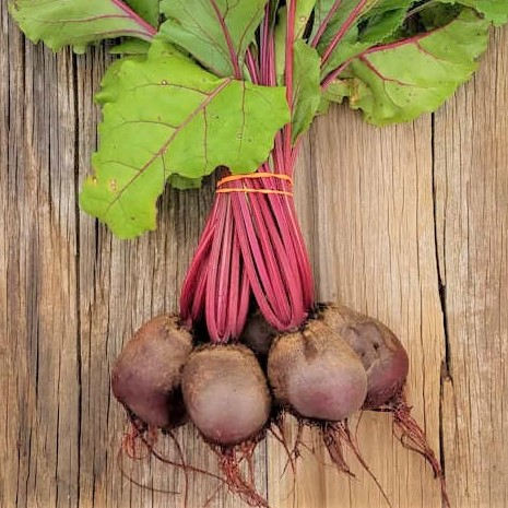 Beets…Nature's Rocket Fuel?