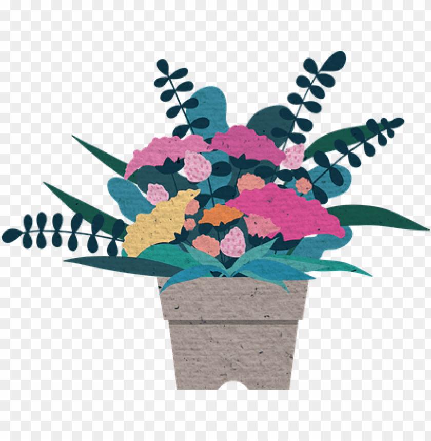 flower illustration potted plant