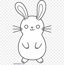 clipart bunny toppng freeuse