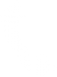 Telephone Icon Png : telephone, Download, Transparent, Background, Phone, White, Images, TOPpng