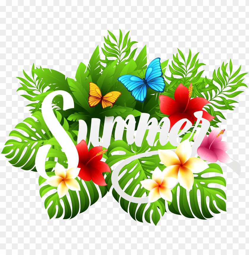 Hibiscus Clipart Vacation Summer Png Clipart Png Image With Transparent Background Toppng