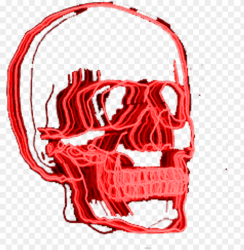 red skull neonlights neonsigns aesthetic aesthetictumbl aesthetic grunge tumblr transparent pngs PNG image with transparent background TOPpng