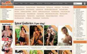 Babepedia - top Pornstar Databases