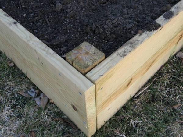 Using Pressure Treated Lumber in Raised Garden Beds