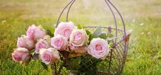 kwiaty z dowozem warszawa