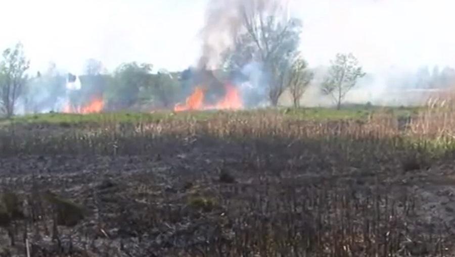 Казне за паљење ватре на отвореном