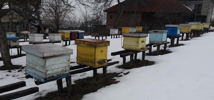 Док пчеле зимују за пчеларе нема одмора