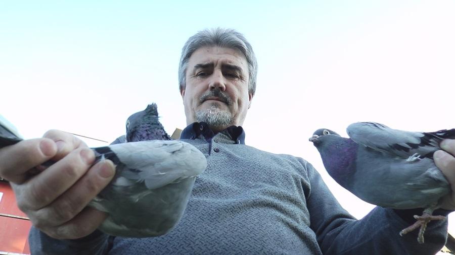 """Свештеник Ђорђе из Тополе већ пола века узгаја голубове, од милоште их зове """"попине зверке"""""""