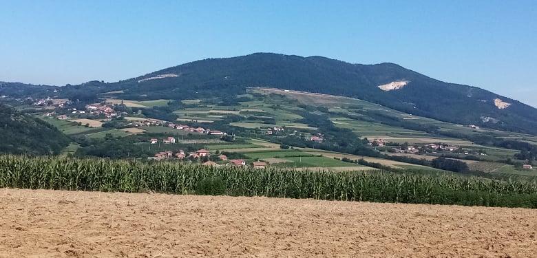 У Србији можете бесплатно добити 50 хектара земље, постоји само један услов који морате да испуните