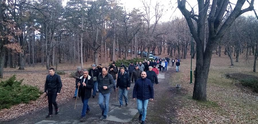 Као некад краљ Петар! Јединствен обичај у Србији – ево како изгледа сеча бадњака на Опленцу у краљевој шуми