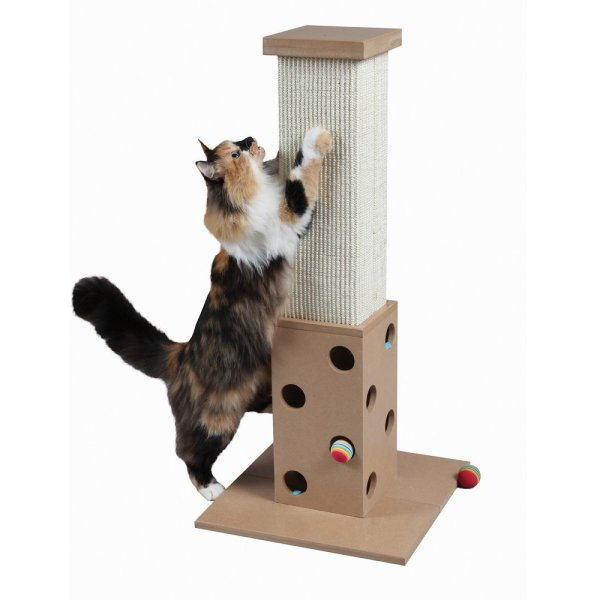 Cat Scratching Post Of 2019