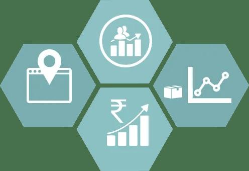 Professional SEO Management   Digital Marketing Campaign