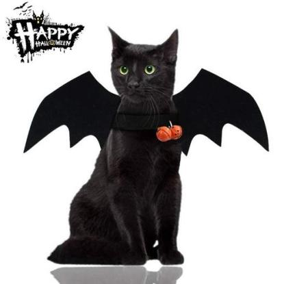 malier bat wings with pumpkin bells halloween costume for cats with velcro adjustable design for neck and cheast suitable for cats or dogs