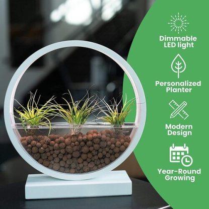 Make Lemonade ML-PB100 Indoor LED Planter with Starter Kit