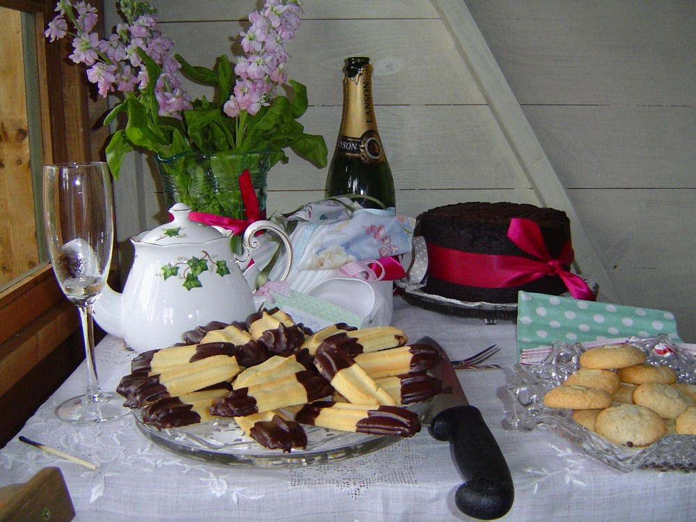 Summerhouse tea party - grand opening! (6/6)