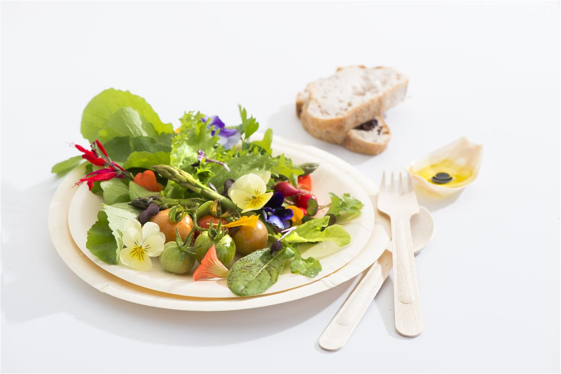 Round Plates Bio Wood with spring salad