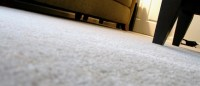 Take the Professional Services for Carpet Cleaning