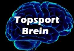 Topsport Brein