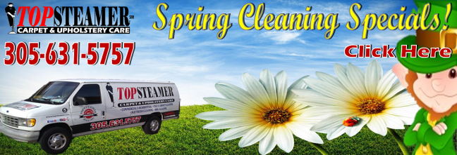 Spring Carpet Cleaning Specials