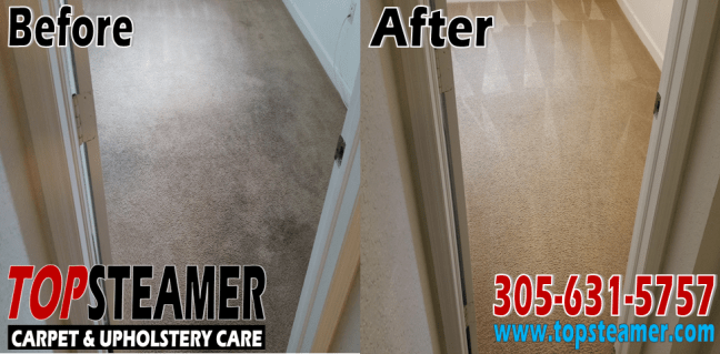 Carpet Cleaning Coral Gables