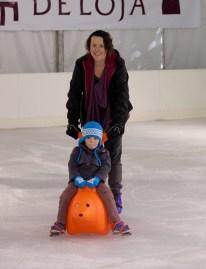 ice-skating-seal