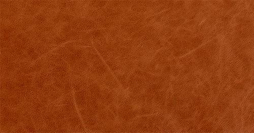 Restore Aniline Leather
