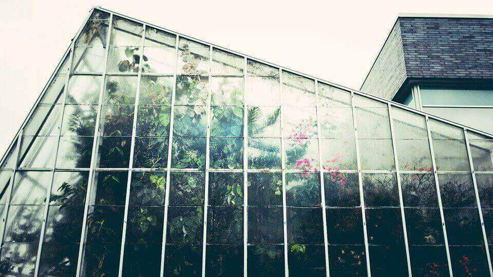 Keeping Your Greenhouse Cool in Summer