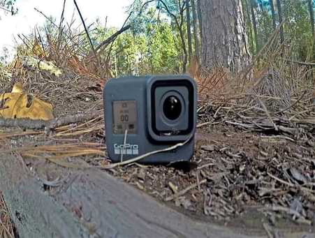 is GoPro good for hunting photography