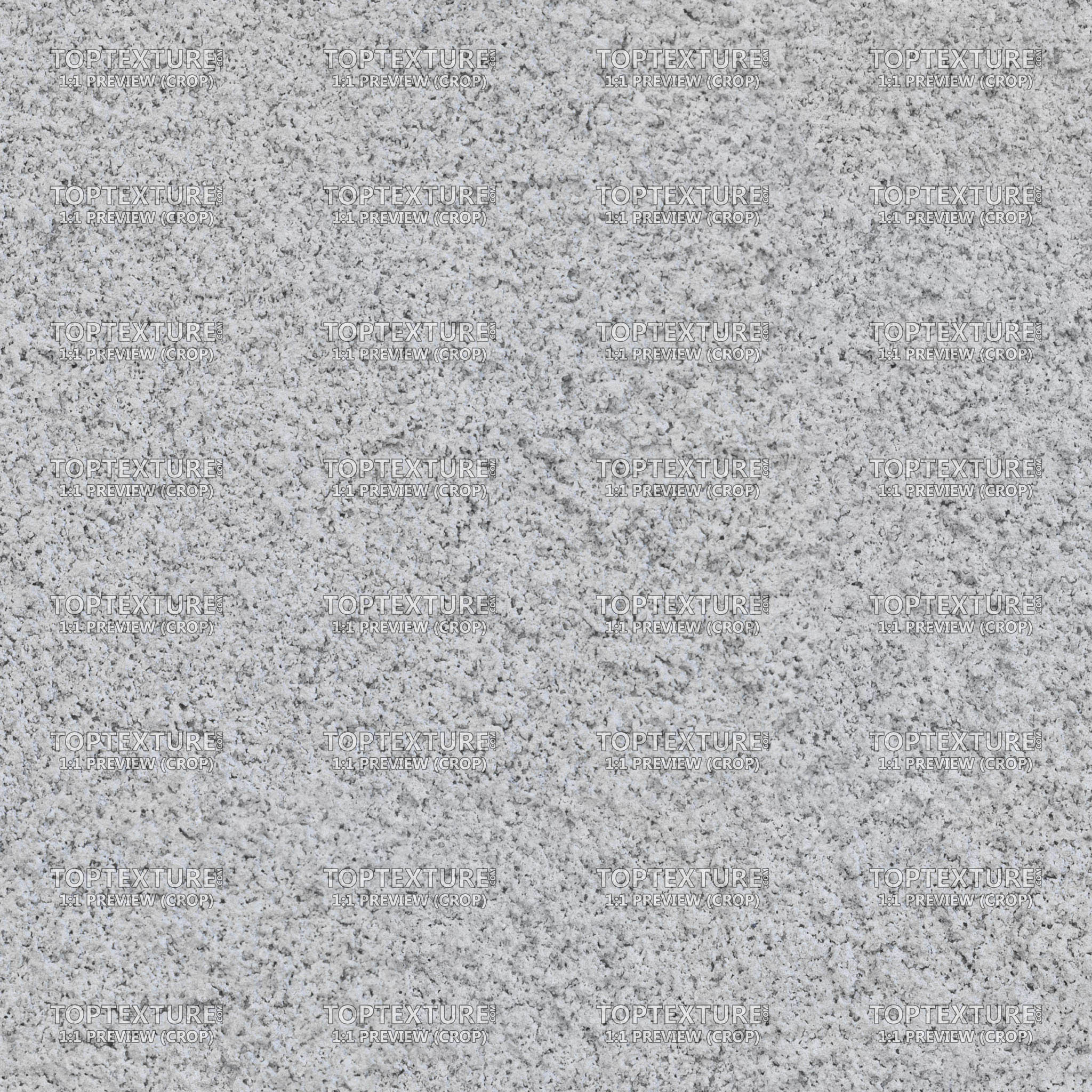 Light Gray Roughcast Plaster Wall