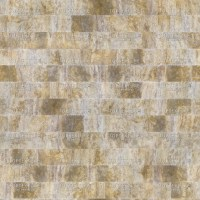Beige-Brown Limestone Wall Tiles - Top Texture